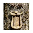 Quirky Tree-Face Bird Feeder