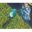 Cordless Hedge & Grass Trimmer, Shears and Blower With 2 Batteries