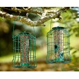 Squirrel-proof Bird Feeder Buy 1 Get 1 FREE