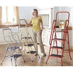 2-Step Safety Ladder