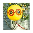 Pack Of 2 Eyeball Bird Deterrents